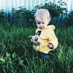 Газонная трава ДЕТСКАЯ